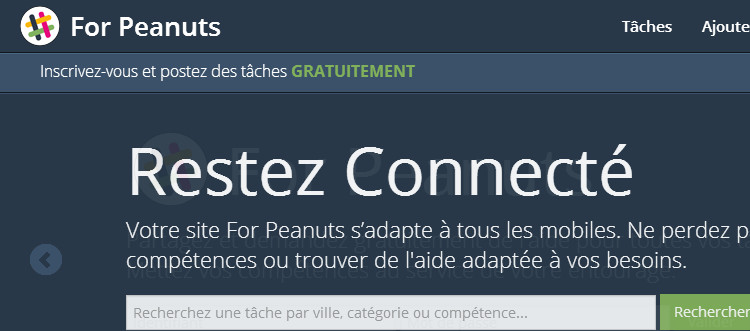 Id e de site web communautaire bas sur l changes de service for Idee de site web a creer
