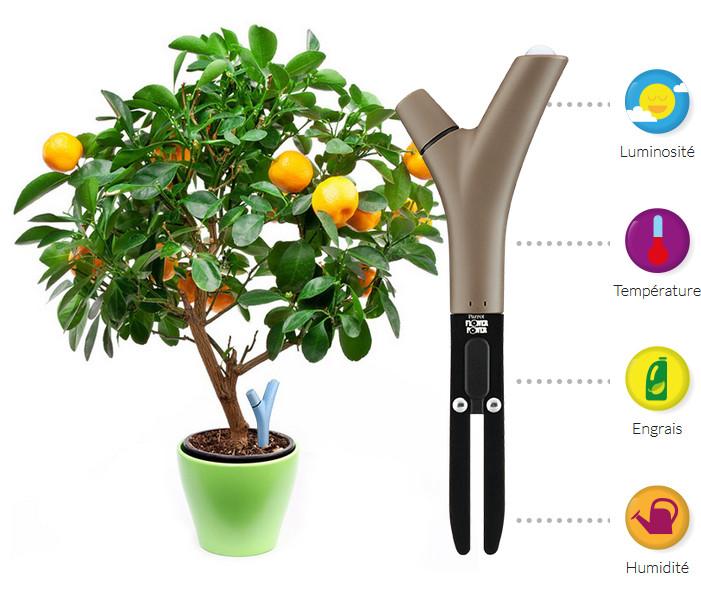 Prendre soin de ses plantes avec son smartphone.